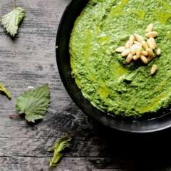 Nettle Recipes
